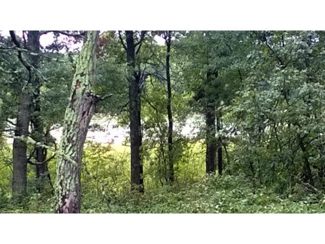 TBD Lot 6 Preserve Circle, Baxter, MN 56425 (#4771172) :: The Preferred Home Team