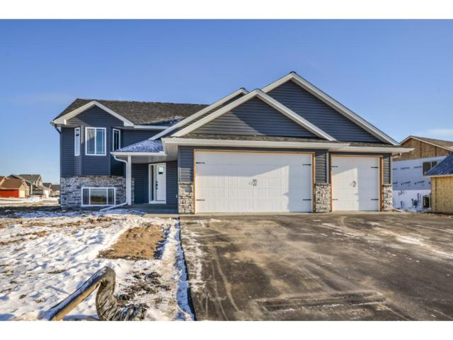 12201 317th Lane, Lindstrom, MN 55045 (#4792226) :: The Preferred Home Team