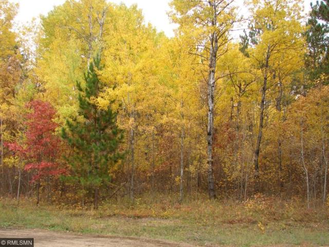 Lot 17 B1 Eaglehaven Trail, Nevis Twp, MN 56467 (#4802039) :: The Preferred Home Team