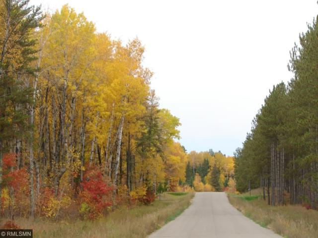 Lot 18 B1 Elkhaven Drive, Nevis Twp, MN 56467 (#4802042) :: The Preferred Home Team