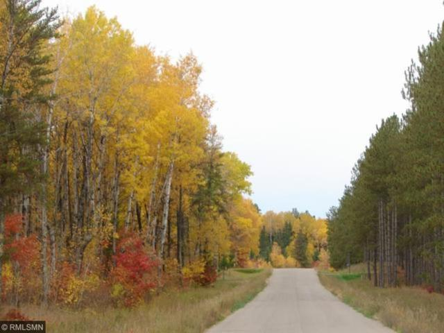 Lot 5 B3 County Road 119, Nevis Twp, MN 56467 (#4802054) :: The Preferred Home Team
