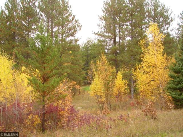 Lot 6 B3 County Road 119, Nevis Twp, MN 56467 (#4802063) :: The Preferred Home Team