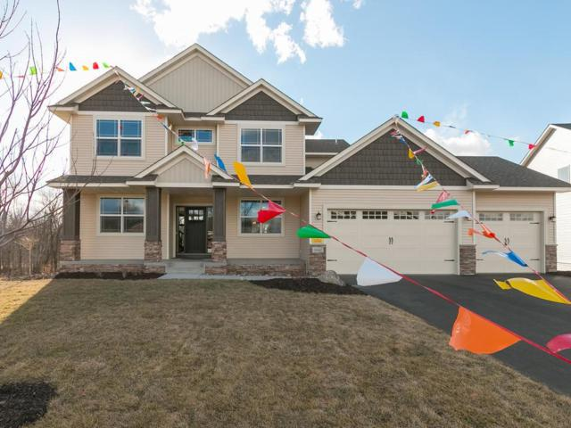16642 Avocet Street NW, Andover, MN 55304 (#4803389) :: The Preferred Home Team