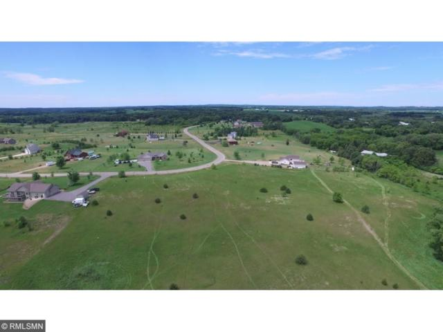 14962 Hidden River Drive, South Haven, MN 55382 (#4830705) :: The Preferred Home Team