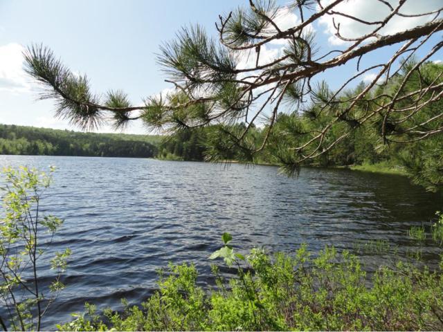 6165 Voyageurs Trail, Biwabik, MN 55708 (#4838635) :: The Preferred Home Team