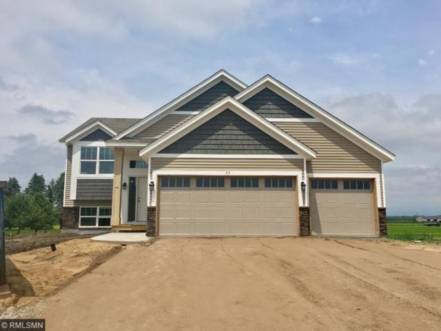 35 Robinson Drive, Lino Lakes, MN 55014 (#4842223) :: Jaren Johnson Realty Group