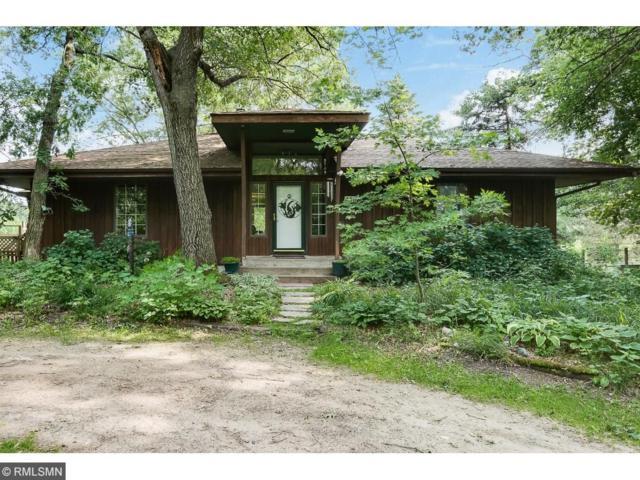 450 173rd Avenue NE, Ham Lake, MN 55304 (#4843071) :: Jaren Johnson Realty Group