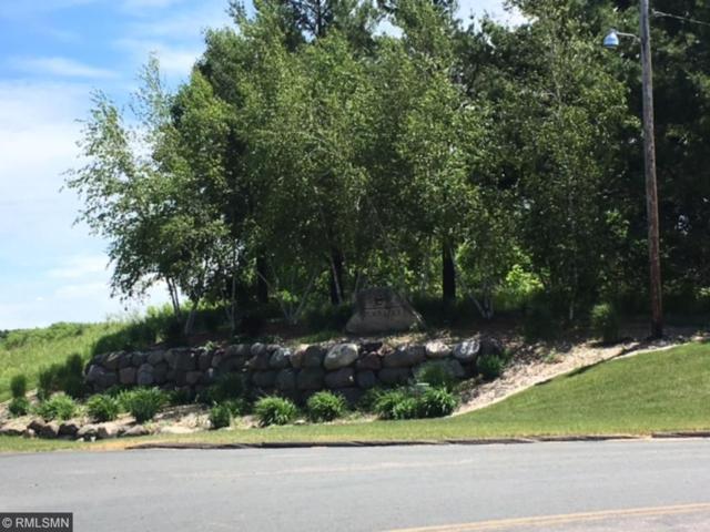 L4 B2 263 Lane, Chisago Lake Twp, MN 55013 (#4843670) :: Jaren Johnson Realty Group
