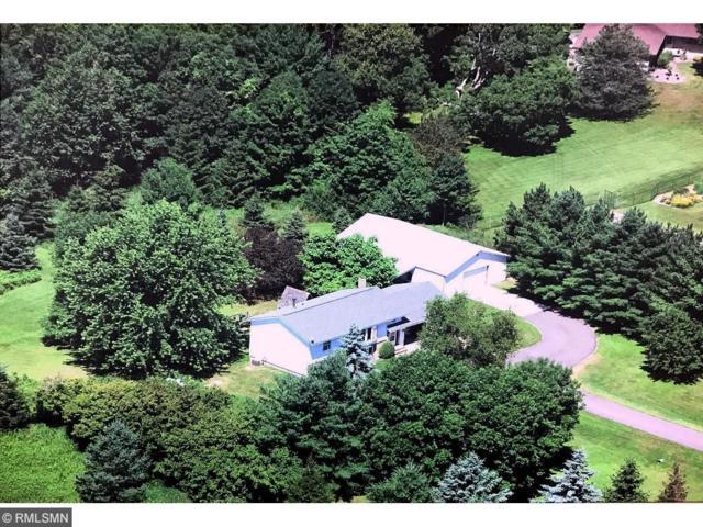 31990 Park Trail, Chisago Lake Twp, MN 55012 (#4844685) :: Jaren Johnson Realty Group