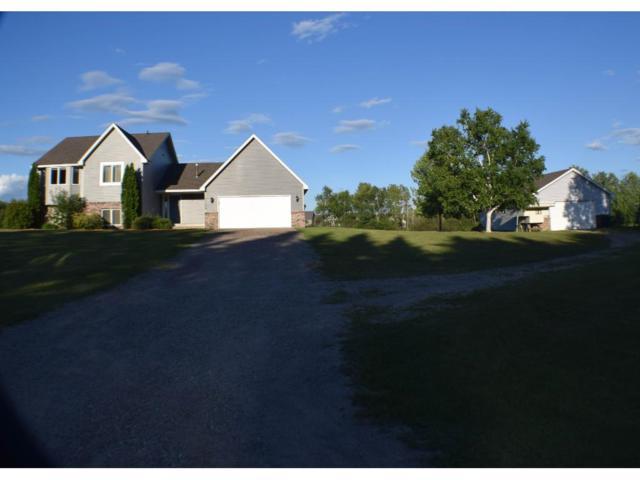 25869 Emerald Avenue, Wyoming, MN 55092 (#4844876) :: Jaren Johnson Realty Group