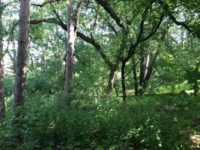 xxxx Pine, Stillwater, MN 55082 (#4845379) :: Jaren Johnson Realty Group