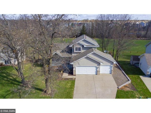 2827 233rd Lane NW, Saint Francis, MN 55070 (#4845709) :: The Snyder Team