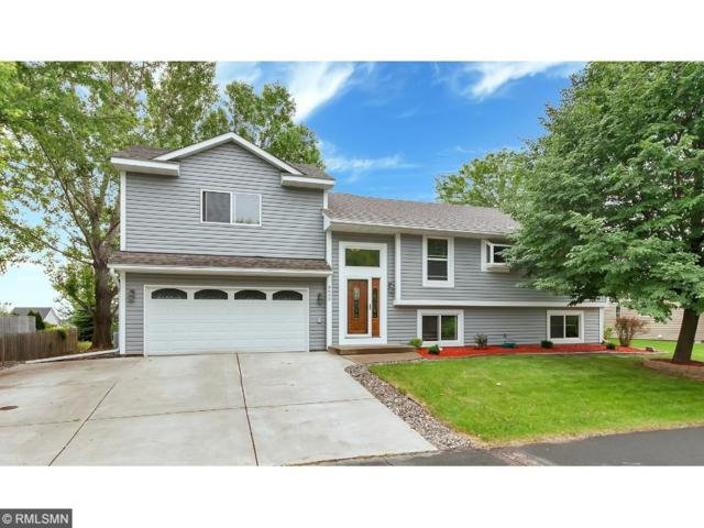 8600 Pineview Lane N, Maple Grove, MN 55369 (#4846857) :: The Search Houses Now Team