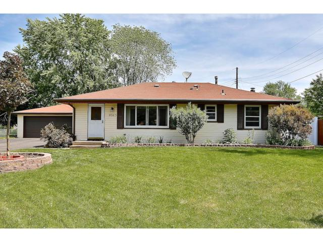 8563 Hilo Lane S, Cottage Grove, MN 55016 (#4847715) :: The Snyder Team