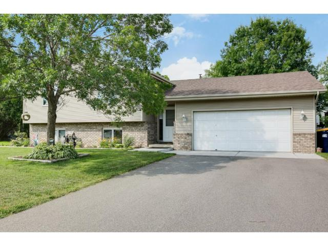 16052 Dodd Lane, Lakeville, MN 55068 (#4847837) :: The Snyder Team