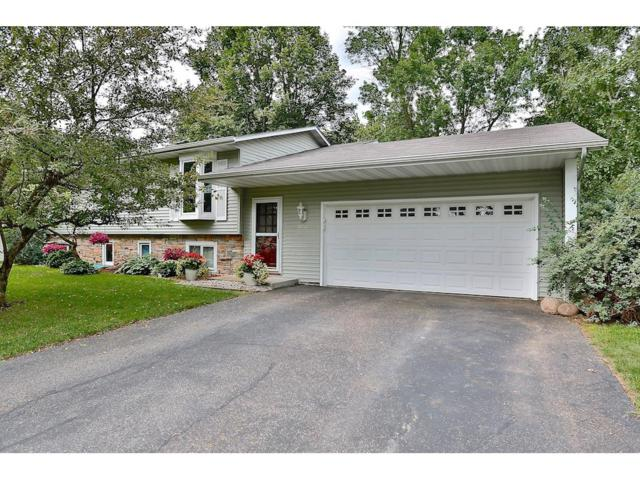 9731 104th Avenue N, Maple Grove, MN 55369 (#4852833) :: The Preferred Home Team