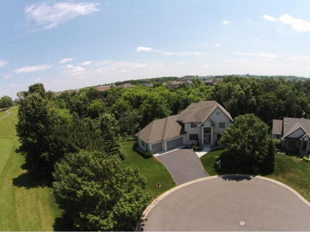 1601 Hidden Pond Lane, Victoria, MN 55386 (#4853053) :: Norse Realty