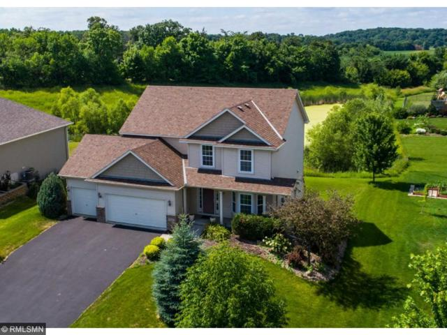 9542 Cottontail Drive, Minnetrista, MN 55375 (#4854061) :: Norse Realty