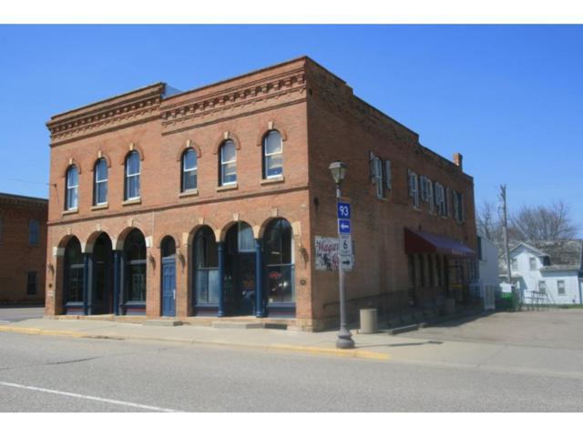 422 Main Street, Henderson, MN 56044 (#4854811) :: The Preferred Home Team