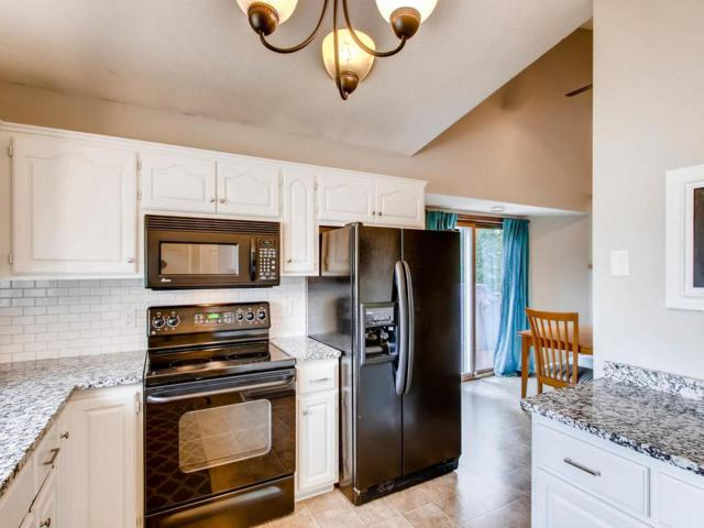 17315 Jade Terrace, Lakeville, MN 55044 (#4856008) :: Norse Realty