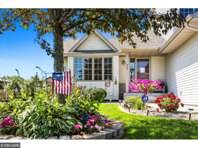 1542 159th Avenue NW, Andover, MN 55304 (#4856046) :: Team Firnstahl