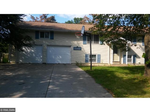 10253 Mississippi Boulevard NW, Coon Rapids, MN 55433 (#4856055) :: Team Firnstahl