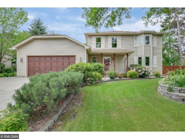 2522 134th Avenue NW, Andover, MN 55304 (#4856123) :: Team Firnstahl