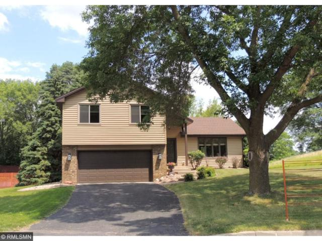 8257 Pennsylvania Road, Bloomington, MN 55438 (#4856221) :: The Preferred Home Team