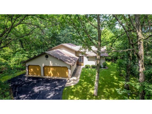 9414 Birch Lane, Lakeville, MN 55044 (#4856890) :: The Preferred Home Team