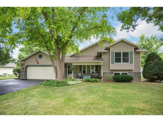 10060 208th Street W, Lakeville, MN 55044 (#4857075) :: The Preferred Home Team