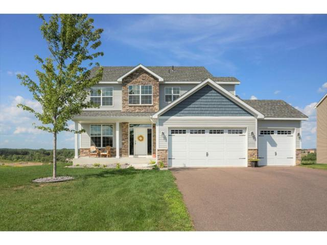 24170 Superior Drive, Rogers, MN 55374 (#4863894) :: House Hunters Minnesota- Keller Williams Classic Realty NW