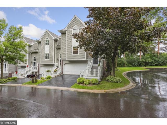 110 Edgewood Court, Wayzata, MN 55391 (#4864478) :: House Hunters Minnesota- Keller Williams Classic Realty NW