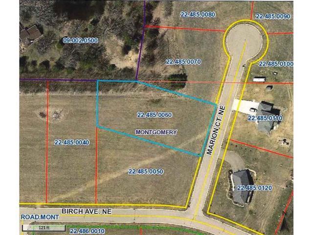 1005 Marion Court NE, Montgomery, MN 56069 (#4864586) :: The Preferred Home Team