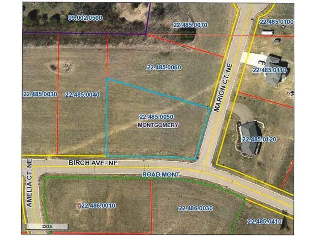 1017 Birch Avenue NE, Montgomery, MN 56069 (#4864597) :: The Preferred Home Team