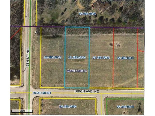 1005 Birch Avenue NE, Montgomery, MN 56069 (#4864609) :: The Preferred Home Team
