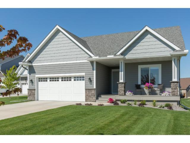 12111 Malisa Court, Rogers, MN 55374 (#4865027) :: House Hunters Minnesota- Keller Williams Classic Realty NW