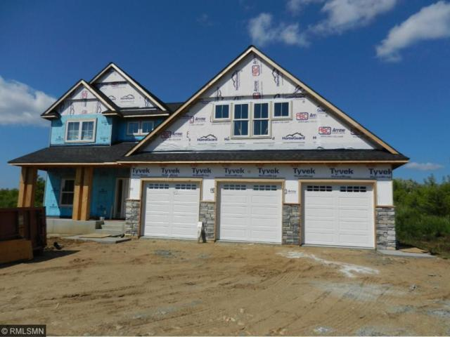 420 Lost Rock Lane, Troy Twp, WI 54016 (#4867807) :: The Snyder Team