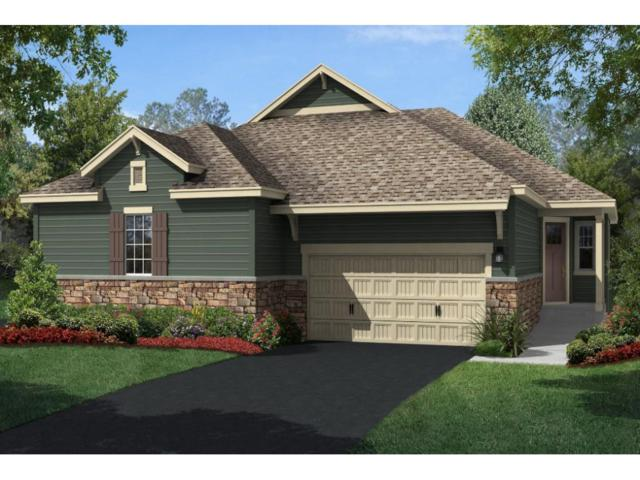 1106 Lemay Shores Court, Mendota Heights, MN 55120 (#4867866) :: The Snyder Team