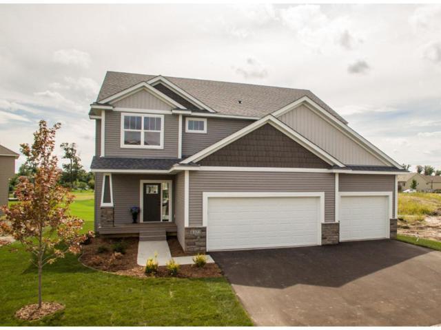 6746 21st Avenue S, Lino Lakes, MN 55038 (#4868229) :: The Preferred Home Team