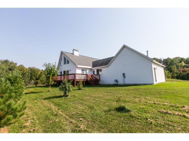 17717 Taylor Street NE, Ham Lake, MN 55304 (#4875072) :: Team Firnstahl
