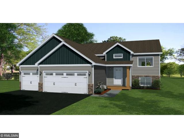 6503 Dempsey Avenue SW, Waverly, MN 55390 (#4875636) :: The Preferred Home Team