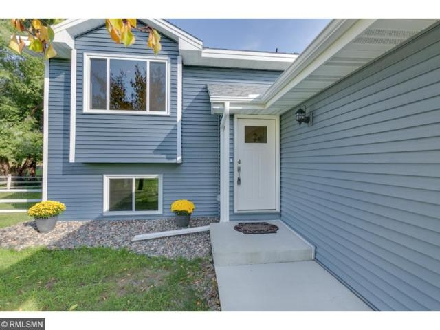 1030 Saddlebrook Trail, Chanhassen, MN 55317 (#4876181) :: Norse Realty