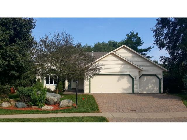 14360 Cobbler Avenue, Rosemount, MN 55068 (#4876445) :: The Preferred Home Team
