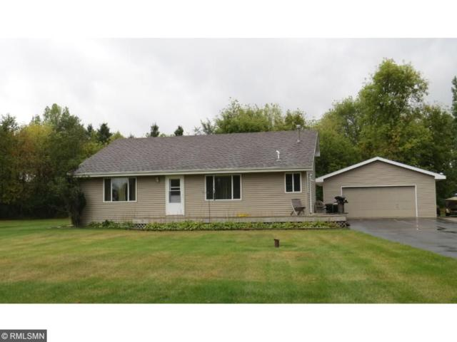 8750 176th Ave Avenue NW, Ramsey, MN 55303 (#4876744) :: Team Firnstahl