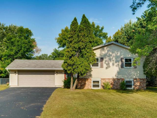 13808 Northwood Drive NW, Andover, MN 55304 (#4877030) :: Team Firnstahl
