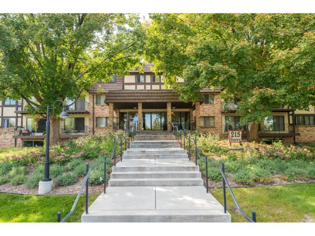 215 Barry Avenue S #309, Wayzata, MN 55391 (#4877410) :: The Preferred Home Team