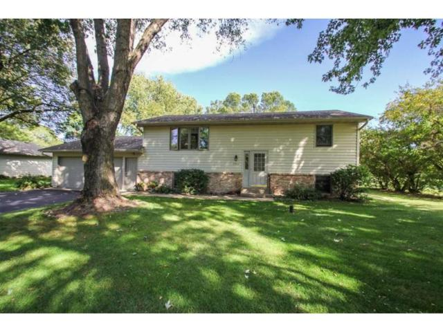 17611 Orchid Street NW, Andover, MN 55304 (#4877566) :: Team Firnstahl