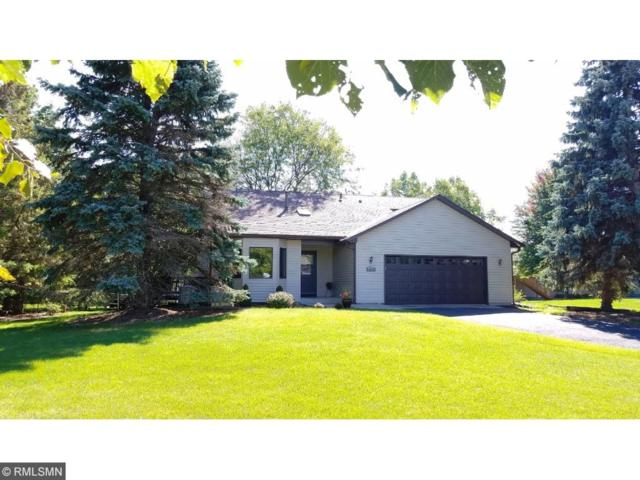 15805 49th Avenue N, Plymouth, MN 55446 (#4877918) :: House Hunters Minnesota- Keller Williams Classic Realty NW