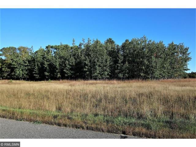 L2 B1 Cullen Woods Drive, Pequot Lakes, MN 56472 (#4878068) :: Olsen Real Estate Group