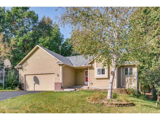 14712 Cherry Court NE, Prior Lake, MN 55372 (#4878135) :: The Preferred Home Team